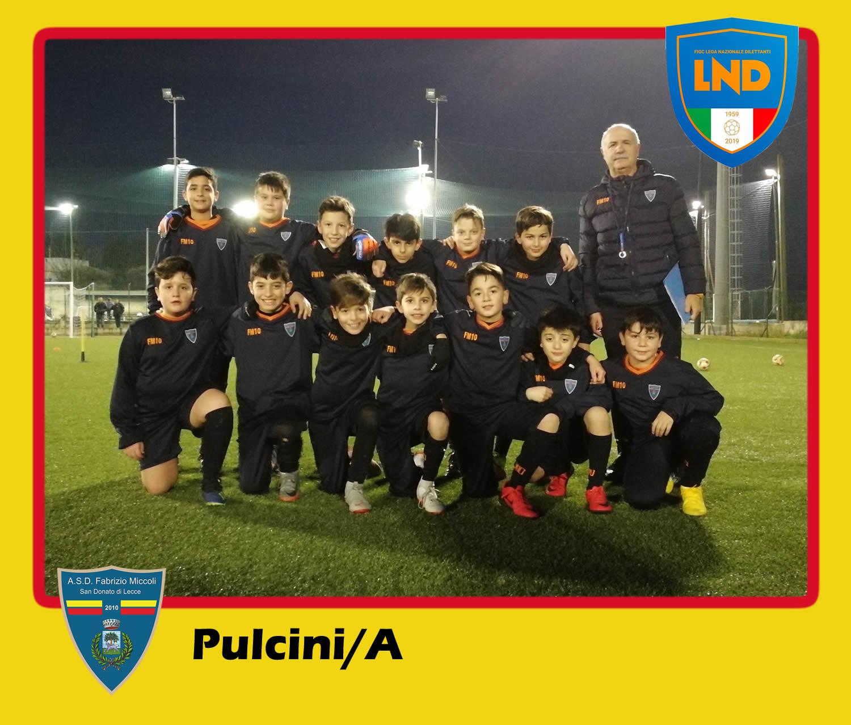 ASD Fabrizio Miccoli - Categoria Pulcini/A